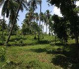 Mirigama Divulapitiya Road 01 Km away from proposed Central expressway entrance Road