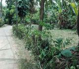 7.5 Perches Land For Sale In Yakkala, Miriswatta, Close to Kandy Road