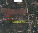 Land For Sale Dambulla (Yapagama)