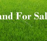6.5 Perches valuable land near Galle road, Dehiwala