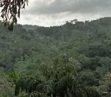 ONe acre land at Udukalakanda