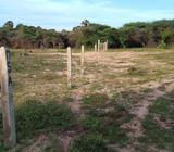 16 Acre Bare Land for sale in Mannar