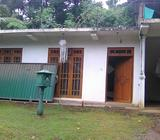 House for rent at digana town