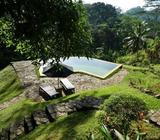 Villa with pool in South Coast lowland tea estate near Galle