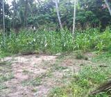 Sale of 150 Perch land in Yakkaduwa
