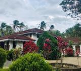 Valuable 1.5 Acre Land with Antique Bungalow for Sale in Ratnapura