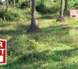 Land For Rent In Hanwella