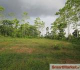 Paddy field facing Land for Sale in Padukka