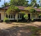House for Rent In Maradagahamulla