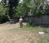 7 Perches Land Sale In Koturupa Raddolugama