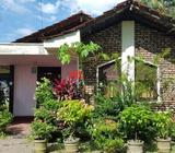 house in negombo town