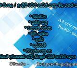 Sinhala/ English type setting