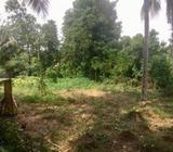 Land for Sale Homagama