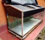 Fish Tank with Stand and Roof
