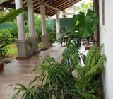 Luxury three bedroom house for sale Battaramulla