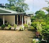 Beauty House For Sale In Meegoda