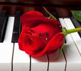 piano classes (individual)