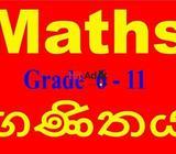 maths tuition home visit o/l (grade 6 - 11)