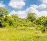Land for sale in Dambulla,Kiralagolla