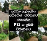 residential land | kadawata | for sale