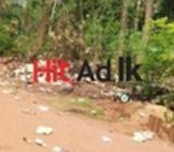 land for sale in dambulla, a9 road