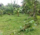 Land for Sale in Negombo - Dalupotha