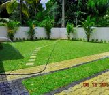 Manel Garden Design Grass & Interlock