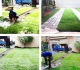 KDC Garden Service