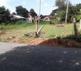 13.5 P Luxury Land for Sale Negombo