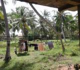167p Luxury Land for Sale Negombo