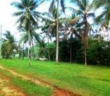 Land in Padukka | 10p