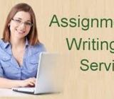 HND Assignment Writing Service