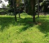 Land for Sale in Nugegoda - LL517