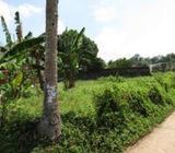Land | for Sale in Pelawatta - MCP685
