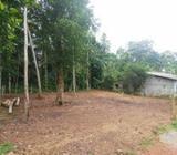 Land for Sale Malamulla