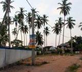 Prime Land Blocks for Sale at Raddolugama