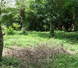 Valuable Land For Sale in Divulapitiya