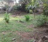 High Residential Land with 18 Feet Rd Piliyandala