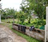 LAND FOR SALE JAYANTHIPURA
