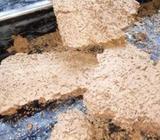 Termite Control-වේයන් මර්ධන ව්ශ්ෂඥයà·