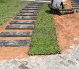 Grass Work & Landscaping