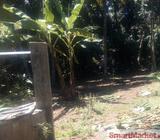 Land for Sale at Kadawatha