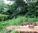70 Perches Land for sale with a Running Timber Mill