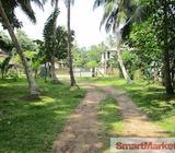 Valuable Property for Sale in Katana, Negombo, facing Katana Road