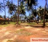 Commercial Land for Sale Dungalpitiya, Wattala