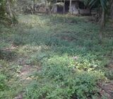 Perches 51 Land for sale in gampaha