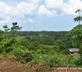 LAND IN THE HEART OF : - LABUDUWA (ADMINISTRATIVE CITY)