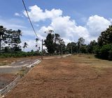 10 Land blocks for Sale at Mirigama, Kotadenniyawa.