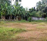 Valuable 12.5 Perches Land for Sale at Belummahara, Gampaha.