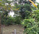 LAND FOR SALE IN MAKULUDUWA-PILIYANDALA